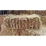 Fleet Farm™ Handy Size Barley Straw Bale - Feed Quality (90cm x 50cm x 40cm) 9