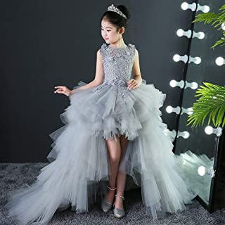 Luxury Princess Dress Girls Evening Dress Catwalk Models Trailing Wedding Flower Girl Dress Tutu Costumes for Children Piano Small Host Detachable Tail ryq (Color : Grey b, Size : 150cm)