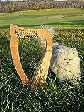 Arpa celta para niños de Irisch, 12 cuerdas, con solapas de media tono, incluye funda