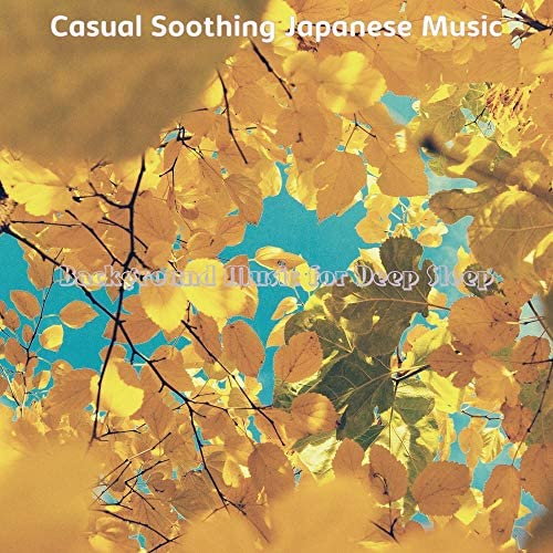 Casual Soothing Japanese Music