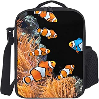 Hatmore-Portable Thermal Insulation and Cold Preservation Dinner Lunch Bags Tote for Work Travel School Picnic,Unique Clown Fish Tropical Reef