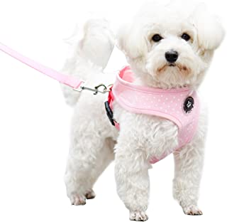 EXPAWLORER Soft Mesh Polka Dots Dog Harness with Matching Leash