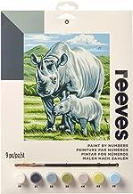 Reeves Black Rhino Paint by Numbers Set, Medium