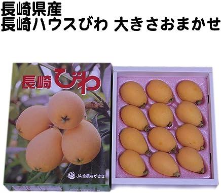 【長崎県産】長崎ハウスびわ 大きさおまかせ 1箱 化粧箱入