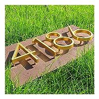 SHOUGONG ゴールデン浮動現代のハウスナンバーサテン真鍮ドアホームアドレス番号ハウスデジタル屋外サインプレート5でください。 (Color : Bright Brass, Size : 5)