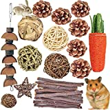 QHZHANG Hamster Chew Guinea Pig Toys,24PCS Combined Chew Toys Molar Sticks Sweet Bamboo Apple Branch Molar Toy for Rabbits Pets Chinchilla Squirrel Gerbil Hamster Squirrel(A)