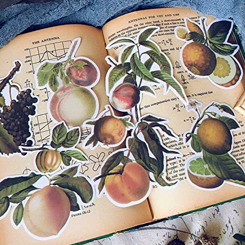 Hand Account Materiaal Retro Plant Grote Perzik Druif Fruit Sticker