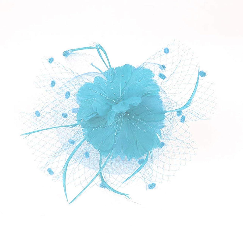 キャンパス練る練るBeaupretty魅惑的な帽子羽メッシュネットベールパーティー帽子ピルボックス帽子羽の魅惑的なキャップレディース結婚式宴会カクテルパーティー(スカイブルー)