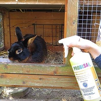 Produit Nettoyant et Éliminateur d'odeurs Bio pour Animaux, Chiens, Chats et autres Probisa Micro Vet 813 – Spray désodorisant pour intérieur avec animal, niche, litière, cage… (Ensemble complet – 0,5 litre de concentré donnent 25 litres prêt à l'emploi)