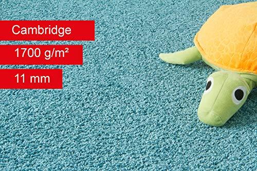 Steffensmeier Teppichboden Cambridge Meterware | Auslegware für Kinderzimmer Wohnzimmer Schlafzimmer | Türkis, Größe: 200x600 cm