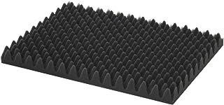 Astage(アステージ) プロテクトクッション W約45×D約30cm PT-L