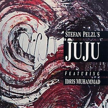 Stefan Pelzl's Juju