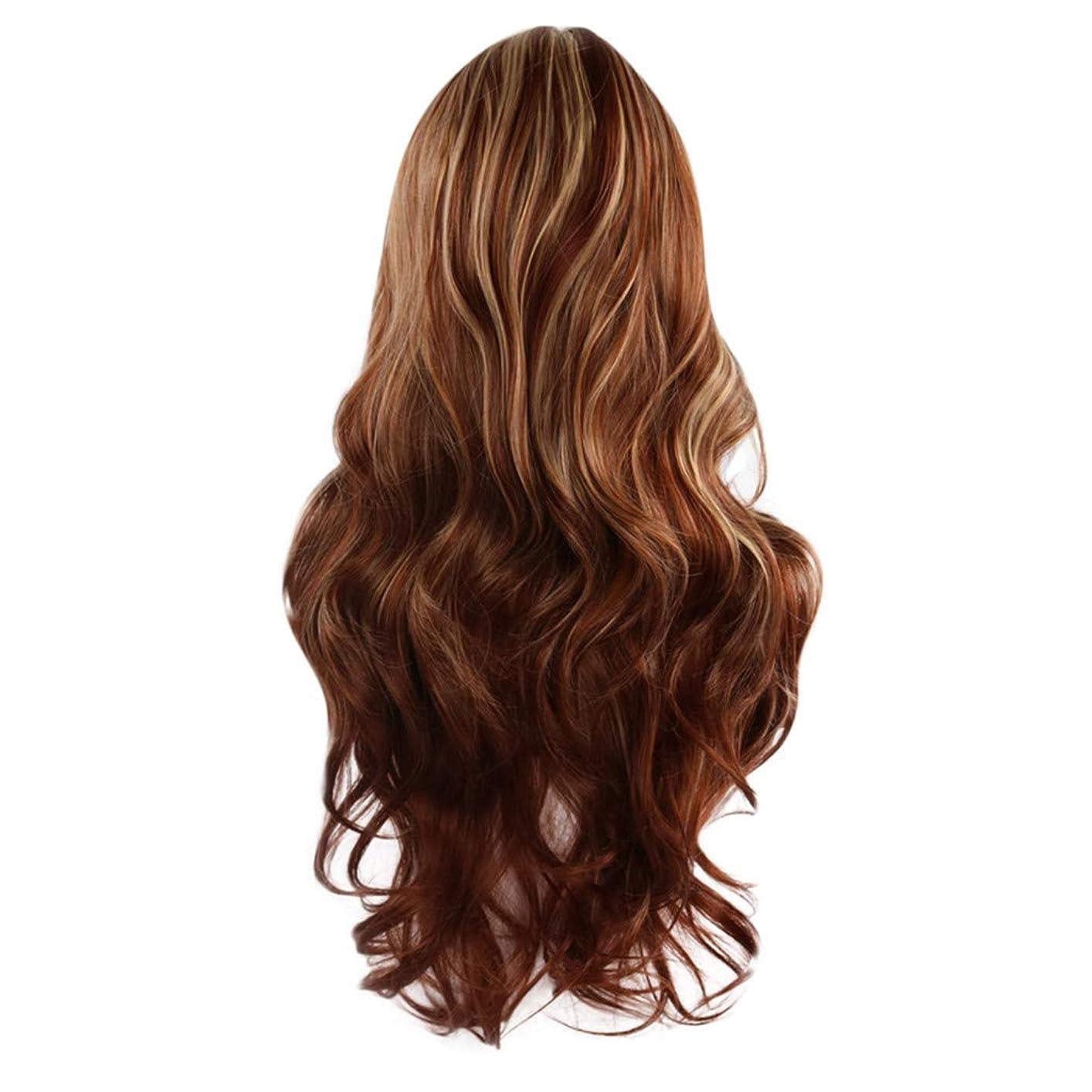 サイレンスケジュール啓発する女性の茶色の長いウェーブのかかった巻き毛のかつらフルウィッグローズネット