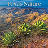 Texas Nature 2022 12 x 12 Inch Monthly Square Wall Calendar with Foil Stamped Cover, USA United States of America Southwest State Wilderness