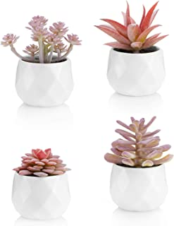 Viverie Faux Succulents in White Ceramic Pots for Desk, Office, Living Room, and Home..