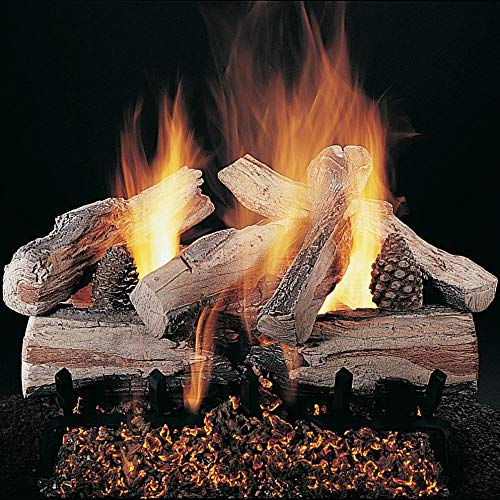 Buy Rasmussen 30-Inch Evening Crossfire Gas Log Set with Vented Valve Vanisher Propane LC Multi-Burn...