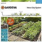 GARDENA Kit d'arrosage goutte-à-goutte pour massifs et potagers: système d'arrosage Micro-Drip pour un arrosage individuel et flexible (13015-20)