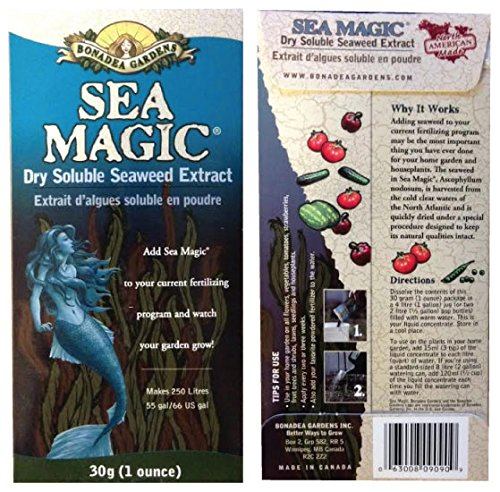 Ranking TOP6 Organic Limited time trial price Seaweed Fertilizer 4 Ounces Magic Sea