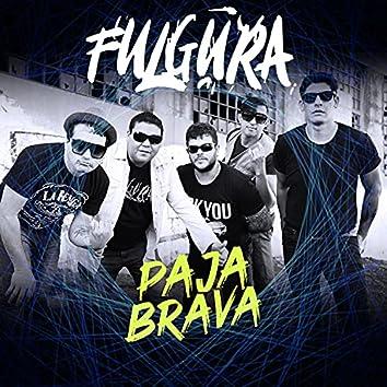 Paja Brava