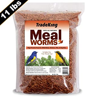TradeKing 11 lb Dried Mealworms - High Protein Treat for Wild Birds, Chicken, Fish & Reptiles