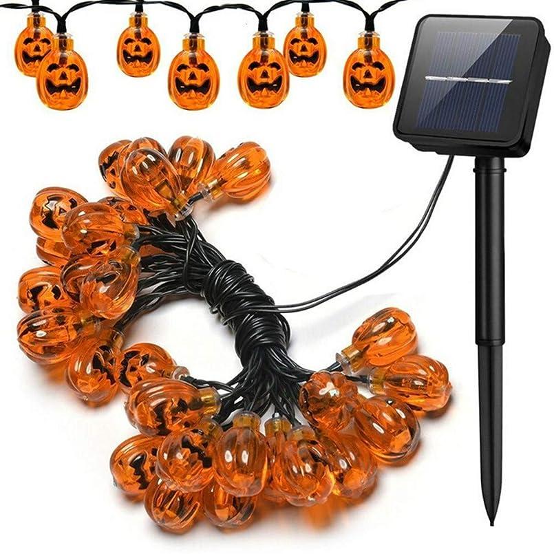 オッズ反対したヘビPursue ストリングスライト ledライト ソーラー充電 ハロウィン電飾 飾りライト 装飾 防水 屋外 室内
