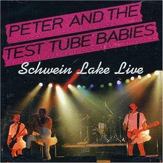 Schwein Lake Live