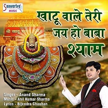 Khatu Wale Teri Jai Ho Baba Shyam