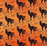 Fat Quarter Wicked Halloween Katzen orange 100% Baumwolle