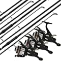 1, 2 or 3x Carp Seeker 12ft / 3.6m Coarse Fishing Rods + 1, 2 or 3x Max 40 2BB Carp Runner Reels by Lineaeffe