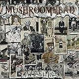 Mushroomhead: A Wonderful Life (Audio CD)