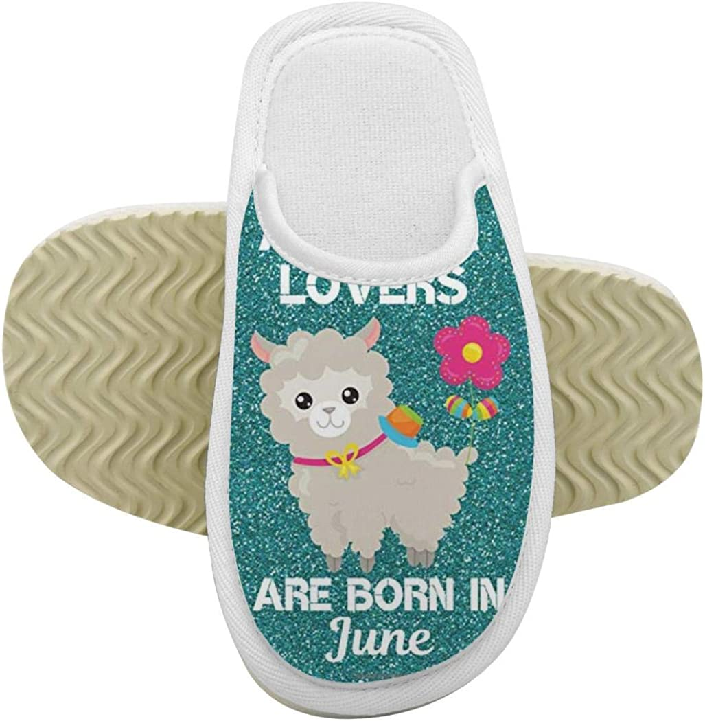 House Slippers No Prob-Llama Memory Foam Indoor Home Slippers Anti-Slip Shoes for Boys Girls