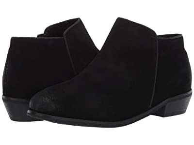 SoftWalk Rocklin (Black Suede) Women