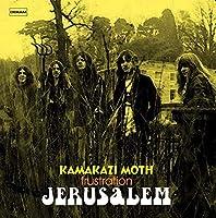 """Kamakazi Moth (7"""") [7 inch Analog]"""