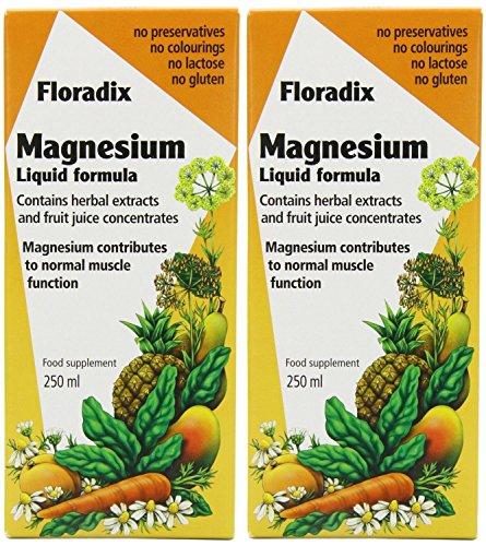 (2 PACK) - Salus Floradix Magnesium Liquid Mineral | 250ml | 2 PACK - SUPER SAVER - SAVE MONEY