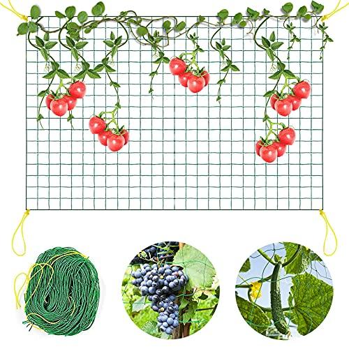 Ranknetz Rankhilfe Garten,2x5m Kletternetz Rankhilfe Netz,Premium Ranknetz mit großer Maschenweite,Rankhilfen für Kletterpflanzen Gurken,Tomaten,Rankhilfe Netz für Gewächshaus (2m x 5m)