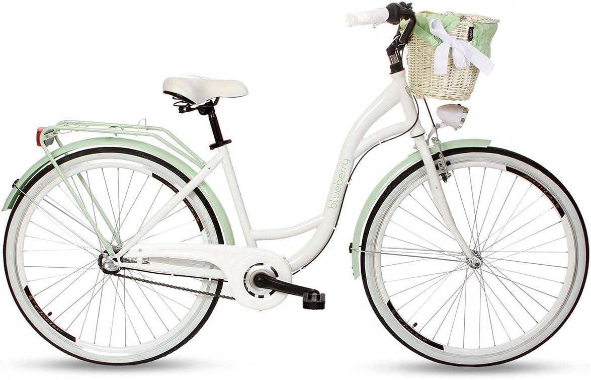 Goetze Blueberry Vintage Retro Citybike Damenfahrrad Hollandrad, 3 Gang Shimano Nexus, Tiefeinsteiger, Rücktrittbremse, 28 Zoll Alu Räder, Korb mit…