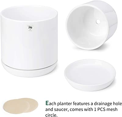 POTEY 053102 Plant Pots with Drainage Holes & Saucer - Glazed Ceramic Modern Planters Indoor Bonsai Container for Plants Flower Aloe(Set of 2-6.6 + 5.1 Inch, Shiny White, Plants Not Included)
