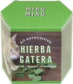 Resetea, Kit autocultivo, Hierba Gatera (1)