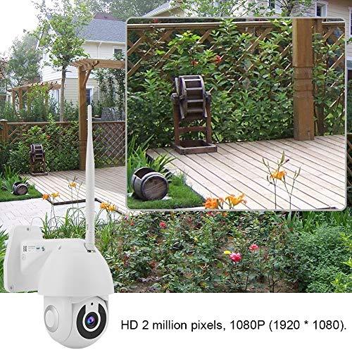 Wosune Cámara Inteligente, cámara HD, cámara de Seguridad con Cambio automático de Filtro, para hogares, Tiendas, fábricas, Negocios(100-240V European Standard, Transl)