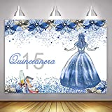 MME 10x7ft Quinceanera 15 Princess Birthday Background Glitter Silver and Crystal Blue Floral Sweet 15 Girl Birthday Party Carnival Dinner Banner Photo Studio Booth Background BJHXME423