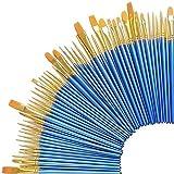 Zoiibuy Pinceau d'art, Lot de 50 Peinture Brosse et Pinceau Professionnel pour Peinture Acrylique, à l'Huile, Gouache (50 Pcs)