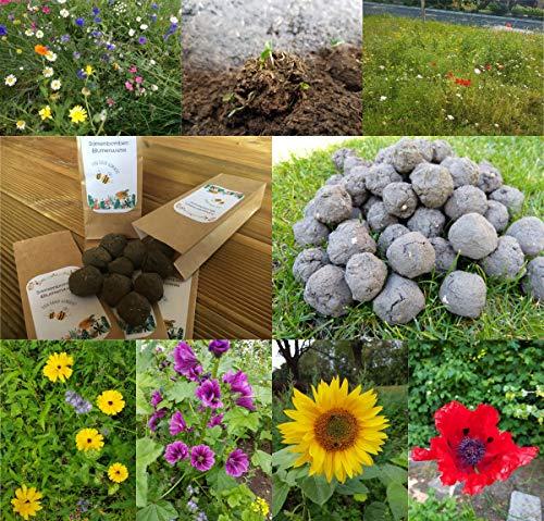 Seedbombs Blumen Samenbomben Bienen Blumenwiese Wildblumen Seedballs Geschenk (50)