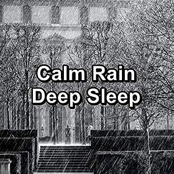 Calm Rain Deep Sleep