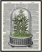 Marijuana Decor - Weed Smoking Gifts - Dope Wall Decor - Cannabis Wall Art - Pothead Gifts - Stoner Room Decor - Pot Smoker Gifts - Weed Posters - Smoking Marijuana Poster - 8x10 Ganja