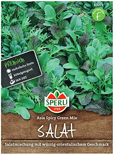Sperli Premium Asia Salat | Asia Spicy Green Mix | 4 Sorten | Asia Salat Samen | winterhart ganzjährig