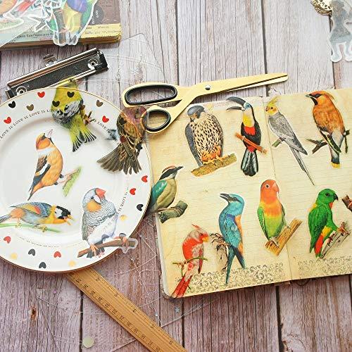 28 Piezas Tropical Jungle Parrot Bird Style PVC Sticker Scrapbooking DIY Regalo Etiqueta de Embalaje Etiqueta de decoración