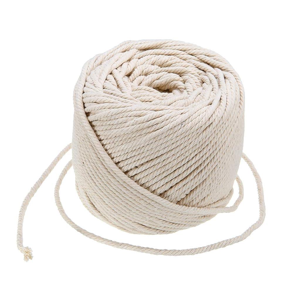 4mm Macrame Cord Natural Cotton Rope Handmade Macrame Hangings Wall Decor Plant Hanger Bohemia DIY Craft Knitting(109 yd,Beige)