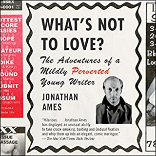What's Not to Love? cover art