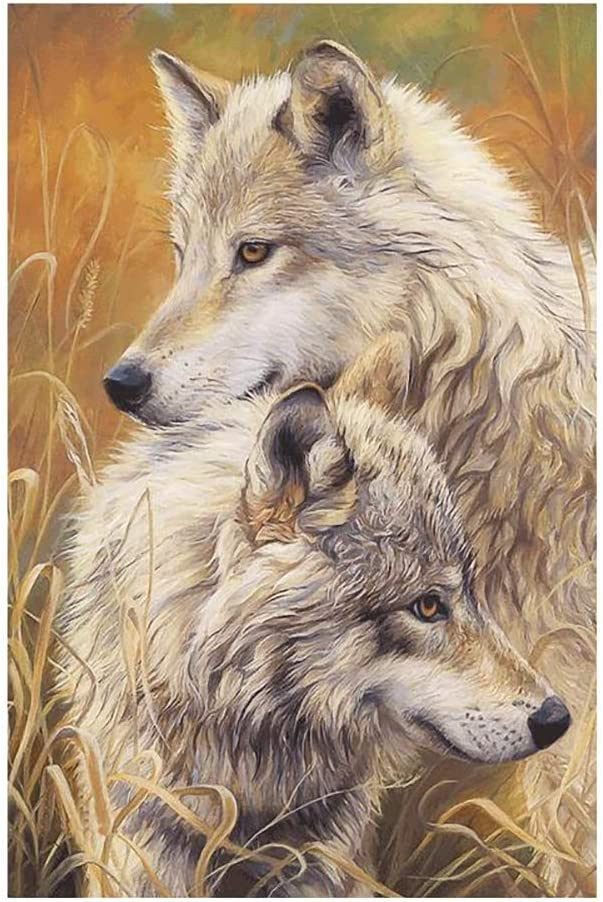 BNSDMM Adults' Paint-by-Number Kits Cros Animal Painting Max 90% store OFF Diamond
