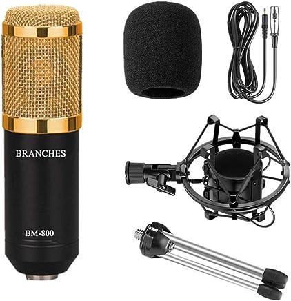 NanYin Kit Microfono per condensatore Professionale BM-800: Microfono per Computer + Shock Mount + Blister + Cavo BM 800 Microfono BM800 (Color : Package1 Black) - Trova i prezzi più bassi